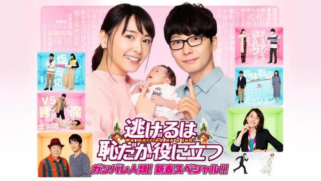 ドラマ『逃げるは恥だが役に立つ ガンバレ人類! 新春スペシャル!!』動画