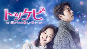 『トッケビ〜君がくれた愛しい日々〜』ドラマ無料動画
