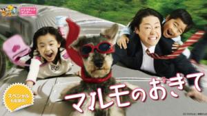 『マルモのおきて』ドラマ無料動画