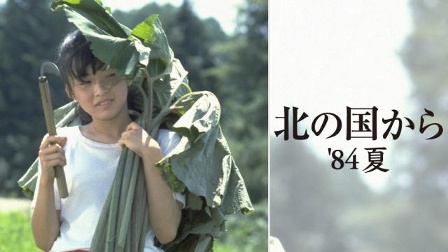 ドラマ『北の国から '84夏(スペシャル)』動画